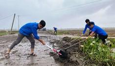 'Áo xanh' thông đường, giúp dân dựng lại nhà sau bão