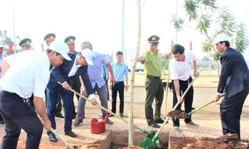 Leaders of People's Committee of Dak Mil district participated in planting trees after the launching ceremony