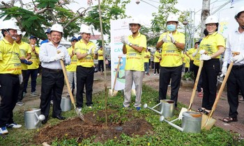 Guest delegates participated in planting trees in Nga Nam town (Soc Trang).
