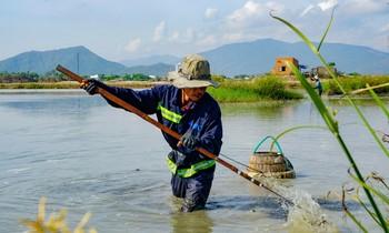 Xem nông dân Bình Định dùng tuyệt chiêu bắt lươn dưới lòng sông.