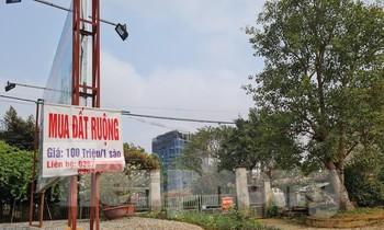 Bộ, ngành, địa phương chặn cơn 'sốt đất'