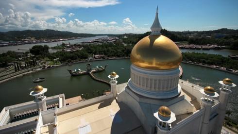 Kinh tế Brunei phát triển nhờ vào nguồn nguyên liệu nào?