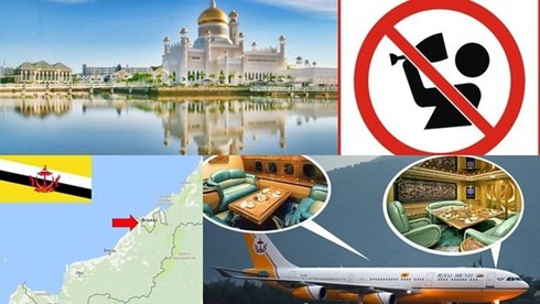 Ở Brunei không được phép bán gì sau đây?