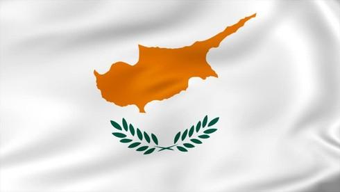 Nhành lá trên cờ của Cộng hòa Cyprus là lá gì?