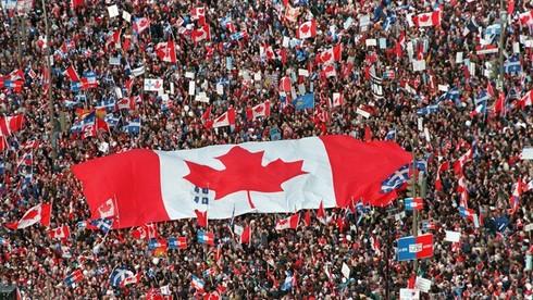 Hình chiếc lá trên quốc kỳ Canada là lá gì?