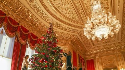 Nơi đầu tiên ở Anh xuất hiện cây thông Noel?