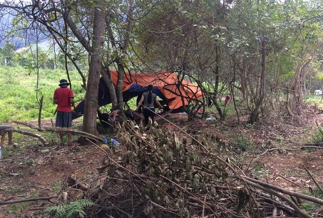 Một nhóm khoảng 10 người dân dựng trại tìm gỗ sưa tại thượng nguồn sông Ba ở làng Sinh
