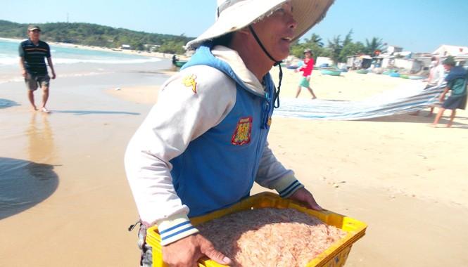Ngư dân vui mừng vì lộc biển đầu năm. Ảnh: Nguyễn Trang.