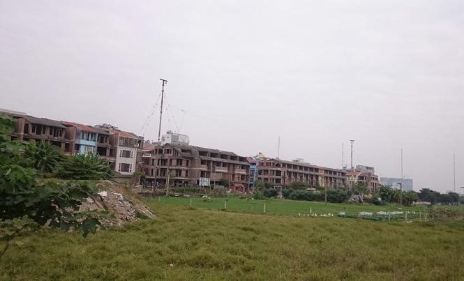 Dự án khu nhà ở Tổng cục V hoang vắng vì hạ tầng chưa đồng bộ, cỏ mọc um tùm.