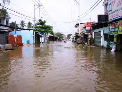 Vỡ đê bao, hơn 200 hộ dân bị chìm trong biển nước