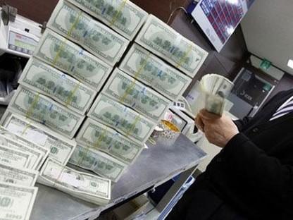 Ngân hàng Nhà nước mua vào lượng lớn ngoại tệ