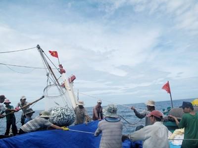 Trung Quốc sẽ bị chất vấn thông tin 'lục soát tàu bè' Biển Đông