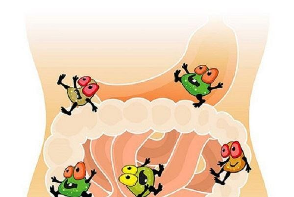 Loạn khuẩn đường ruột sẽ gây rối loạn tiêu hóa