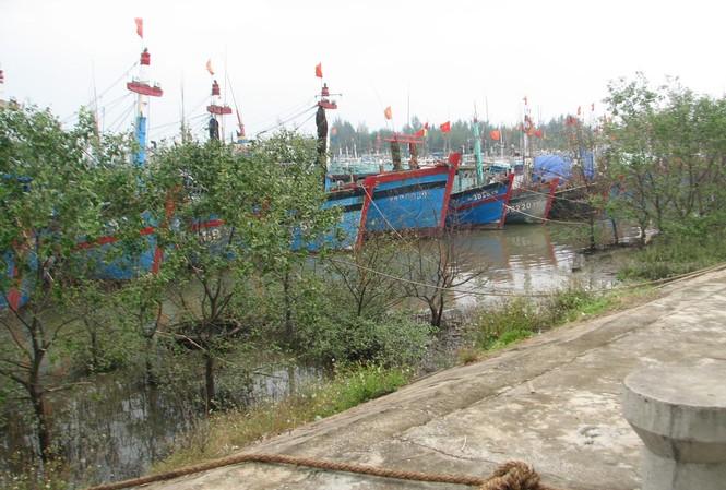 Thanh Hóa cấm biển, 3 tàu cá mất liên lạc
