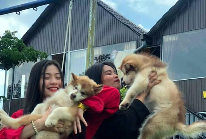 Bạn trẻ thích thú khi được ôm chú chó dễ thương