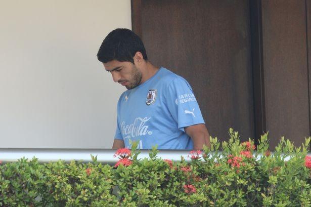 Suarez sớm rời World Cup sau hành động điên rồ.