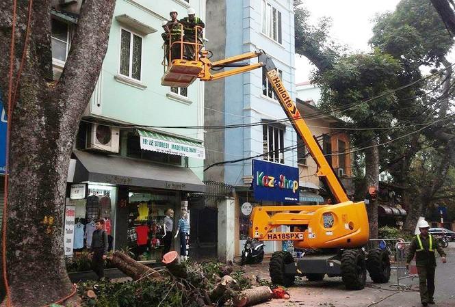 Xe cắt tỉa cây xanh trên các tuyến phố.