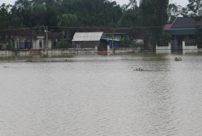 Nghệ An: Hơn 11.000 dân bị cô lập do nước sông Lam dâng cao
