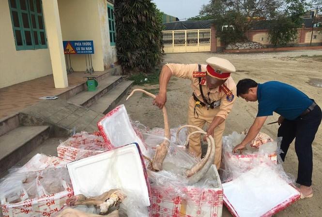 CSGT bắt giữ hàng tấn thịt, nội tạng thối