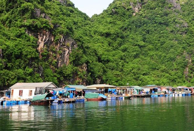 Tỉnh Quảng Ninh yêu cầu tạm dừng tăng phí tham quan vịnh Hạ Long