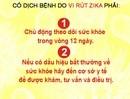 Việt Nam xét nghiệm 83 trường hợp có biểu hiện giống vi rút Zika