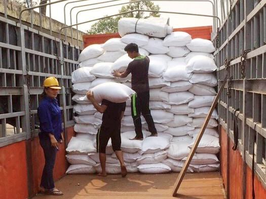 Công nhân bốc xếp gạo từ kho dự trữ quốc gia