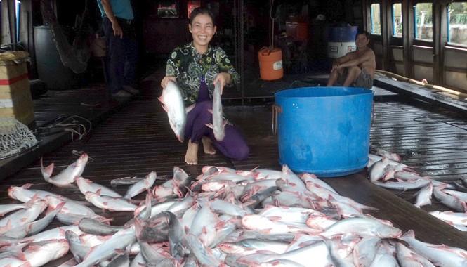 Nụ cười của người bán cá tra. Ảnh: Sáu Nghệ