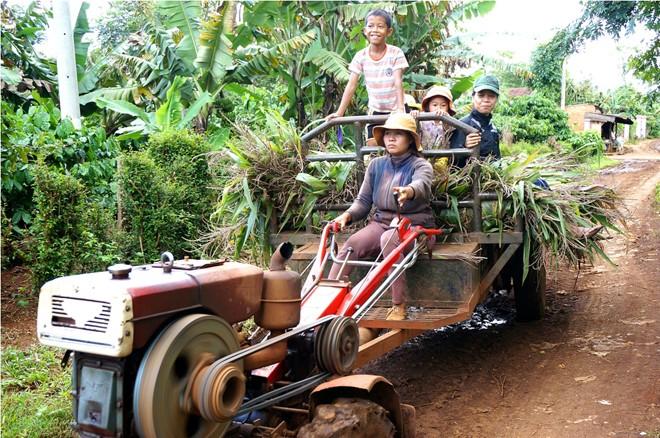 Chị H' Yim lái xe công nông đi lấy cây ngô cho bò. Ảnh: Djuang Yên