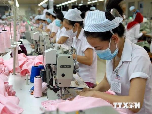 Doanh nghiệp nước ngoài quan tâm đầu tư vào ngành dệt may Việt Nam. (Ảnh: Mạnh Linh/TTXVN)