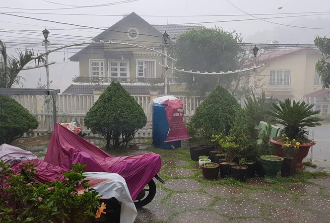 Dịp lễ này Đà  Lạt mưa nhiều
