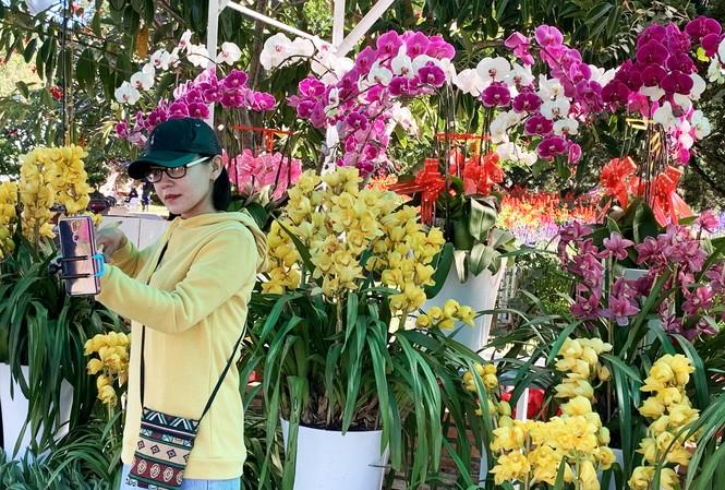 Giới trẻ hào hứng check in tại hội hoa xuân