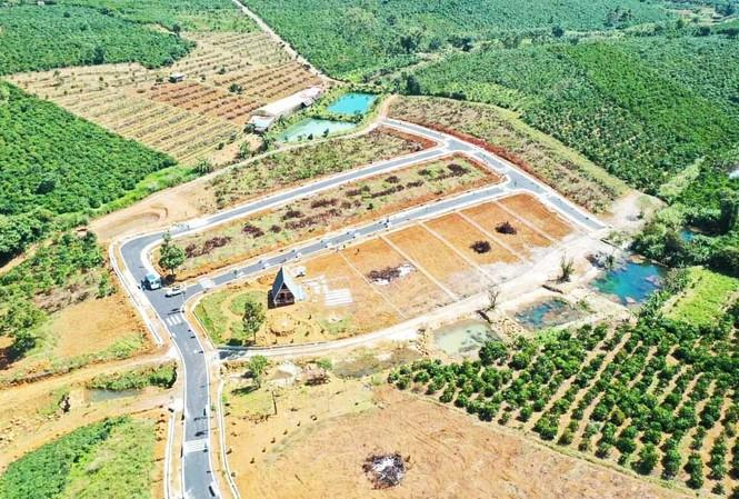 Phân lô đất nông nghiệp ở TP.Bảo Lộc.