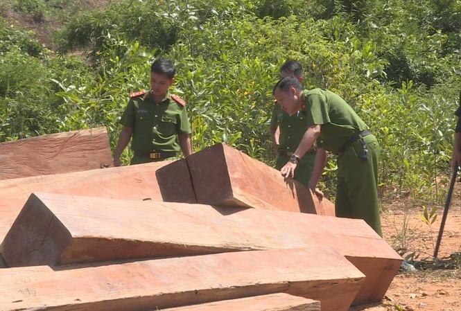 Hiện trường vụ phá rừng tại lâm phần của Công ty TNHH MTV Lâm nghiệp Ea Ka do Công an tỉnh Đắk Lắk phát hiện