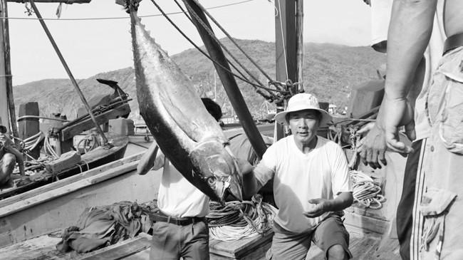 Nhiều ĐBQH đề nghị sửa Bộ luật Hàng hải, ngoài mục đích an ninh quốc phòng cần tạo điều kiện phát triển kinh tế biển. Ảnh: Hồng Vĩnh.