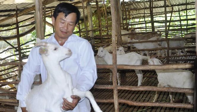 Anh Nguyễn Văn Đua bên đàn dê của mình. Ảnh: Hòa Hội.