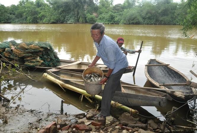 Người dân thu gom cá chết trên sông Sa Lung. Ảnh: Dân Việt