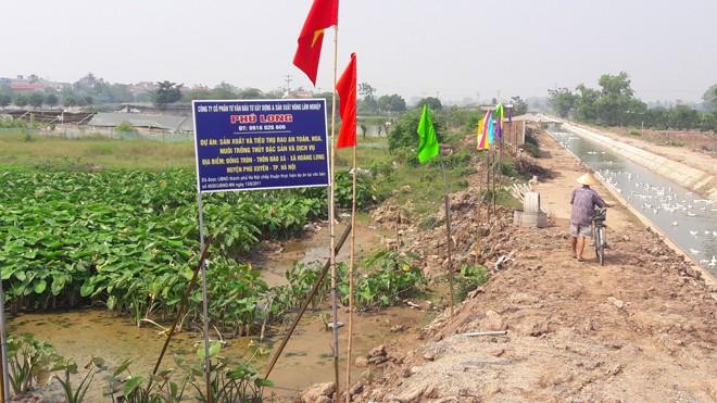 Khu đất mà Cty Phú Long được chấp thuận đầu tư dự án.