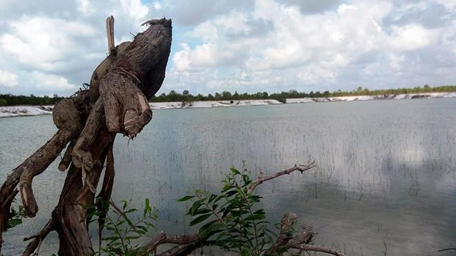 """Vùng mỏ cát bỏ hoang của Cty Sơn Tùng thi thoảng trở thành nơi đua ghe. Trong """"hồ"""" này có nhiều hố sâu"""