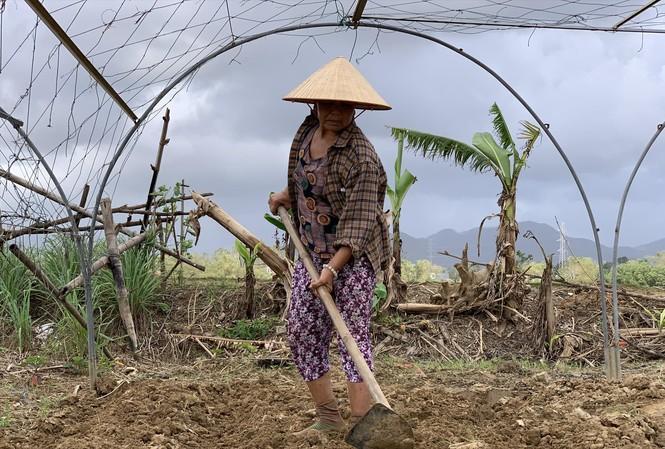 """Các hộ nông dân ở HTX Rau Túy Loan (huyện Hòa Vang) tất bật chuẩn bị đất trồng để canh tác vụ mới, trước mắt là trồng rau ngắn ngày, sau đó """"ngóng"""" trời để xuống giống vụ Tết. Ảnh: Giang Thanh"""