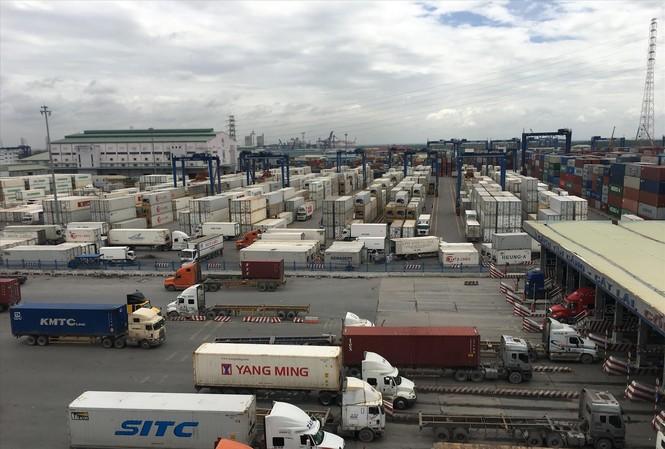 Cảng Cát Lái ùn ứ nghiêm trọng vì hàng loạt container phế liệu phải tái xuất nhưng chưa được xử lý dứt điểm. Ảnh: Tuấn Nguyễn