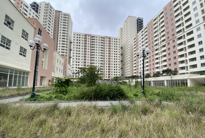 Hàng nghìn căn hộ khu tái định cư Bình Khánh (quận 2, TPHCM) đang bị bỏ trống, gây lãng phí. Ảnh: Duy Quang
