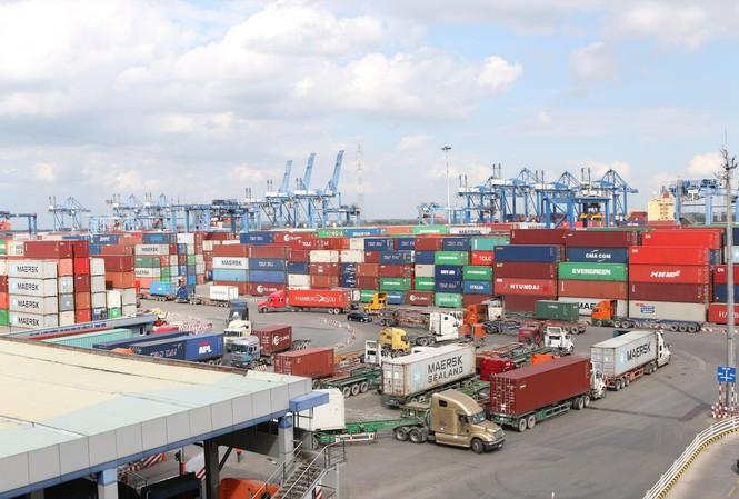 Cảng Cát Lái đã xuất nhiều lô hàng xuân ngay trong đêm 30 tết