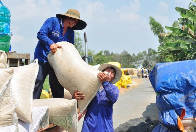 Ở ĐBSCL, giá gạo dùng cho dự trữ quốc gia đang ở mức cao. Ảnh: Anh Tuấn