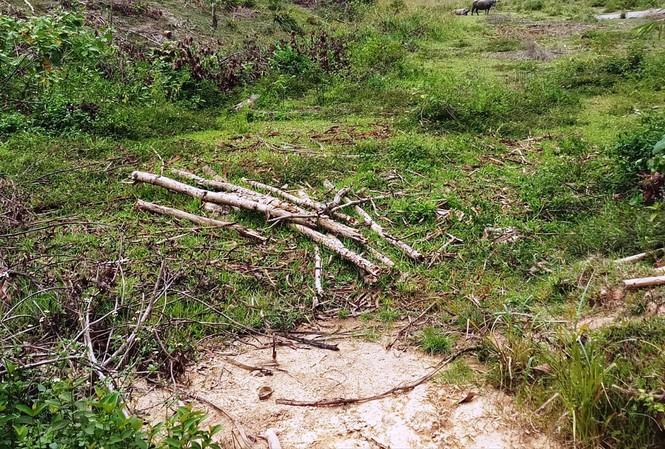 Con suối này ở xã Phú Vinh, huyện A Lưới, tỉnh Thừa Thiên – Huế đã không còn nước