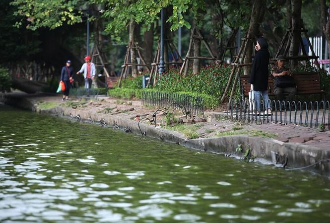 Giáo sư Hoàng Đạo Kính khuyến cáo việc cải tạo phải giữ được đường cong tự nhiên của bờ hồ Gươm    Ảnh: Hoàng Mạnh Thắng