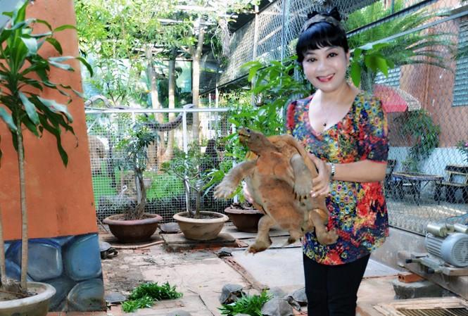 Tác giả với con rùa hơn 10 kg và đã 20 tuổi