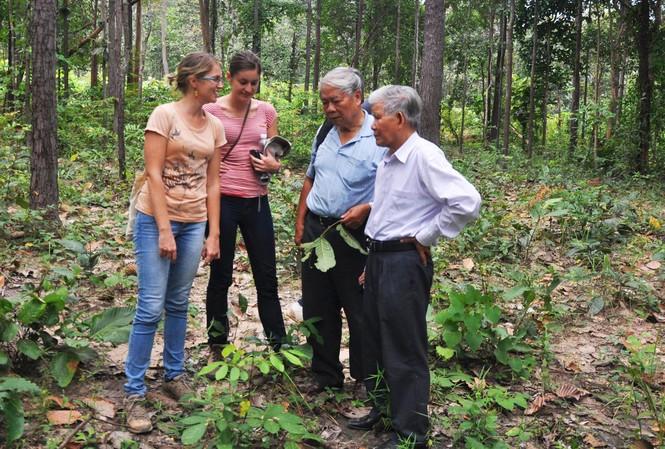 GS.TSKH Đặng Huy Huỳnh (bìa phải) cùng các chuyên gia lâm nghiệp trong một chuyến vào VQG Yok Đôn