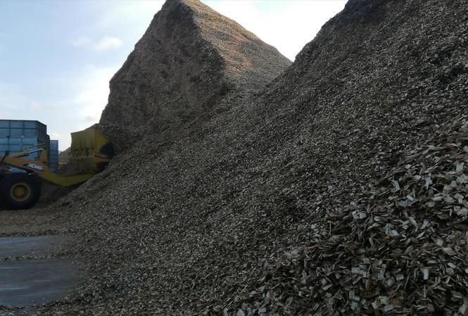 Núi dăm gỗ chờ xuất khẩu tại cảng PTSC ảnh: Thanh Trung