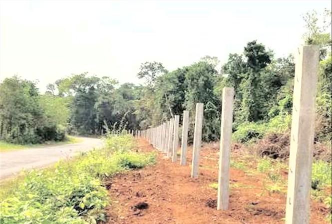 Hạng mục thi công trái phép trên đất rừng khi chưa có giấy phép của cơ quan có thẩm quyền