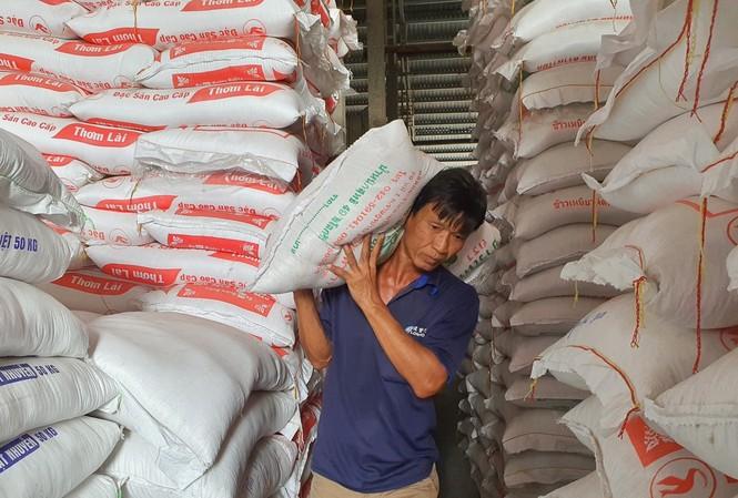 Theo các chuyên gia, xuất khẩu gạo của Việt Nam không cần tập trung quá vào loại đặc sản, mà cần giữ ổn định chất lượng Ảnh: Cảnh Kỳ